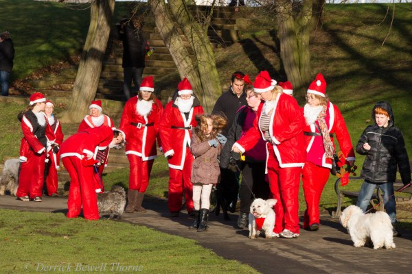 imgl7977-santa-dash-sandall-2012-december-10-2012derrick-bewell-thorne-5184-x-3456-copy