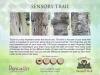 5 Tree bark