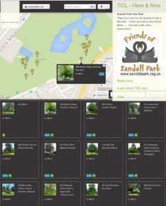 Tree Trail TiCL