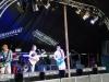 Fake festival  2014 006