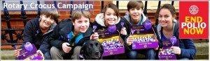 Rotary Polio Campaign